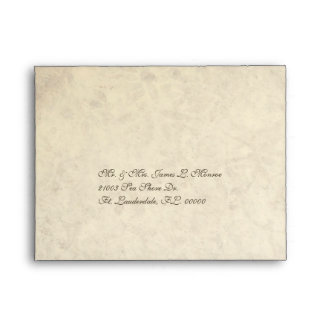 Elegant Antique Look Wedding RSVP Envelope