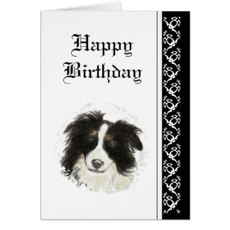 Elegant  Birthday, Border Collie Dog Pet Greeting Card