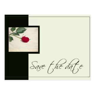 Elegant Black & Ivory save the date Postcard
