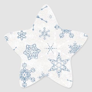 Elegant Blue and Silver Snowflake Print Star Sticker