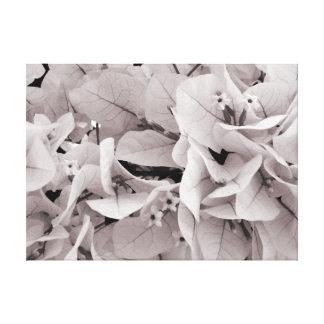 Elegant bougainvillea vintage style floral pattern canvas print