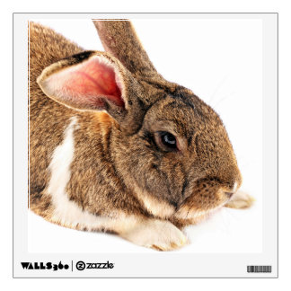 Elegant Brown Rabbit Wall Decal