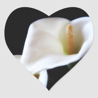 Elegant Calla Lily Flowers 14 Heart Sticker