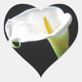 Elegant Calla Lily Flowers 15 Heart Sticker