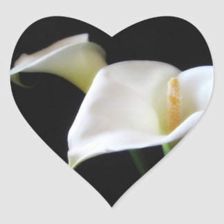 Elegant Calla Lily Flowers 16 Heart Sticker