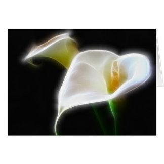 Elegant Calla Lily Flowers 16 Modern Card