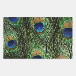 Elegant Colorful Peacock Feathers Custom Photo Des Rectangular Sticker