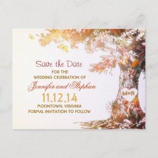 elegant colorful tree save the date postcards