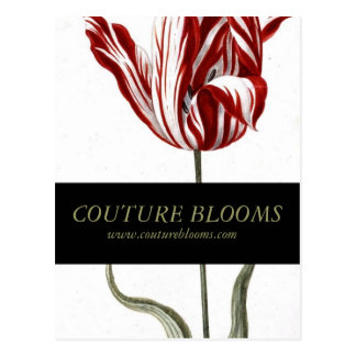 Elegant Couture Business Opening Announcement Card Postcard