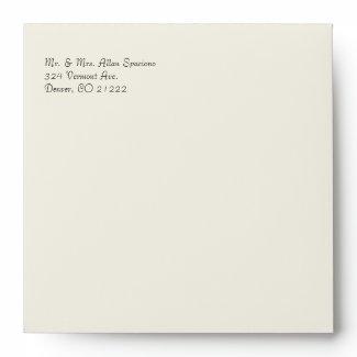 Elegant Cream Damask Wedding Envelope
