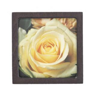 Elegant Cream Rose Jewelry Box
