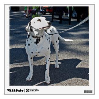 Elegant Dalmation Dog Wall Sticker