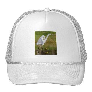 Elegant Dancing Trucker Hat