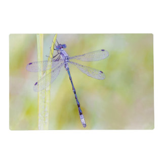 Elegant Dragonfly Watercolor Painting Placemat