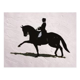 Elegant Dressage Horse Rider Post Card