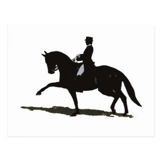 Elegant Dressage Horse Rider Postcards