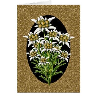 Elegant Edelweiss Flowers on Gold Custom Card