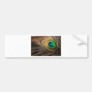 Elegant feather bumper stickers