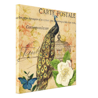 elegant floral peacock birdcage vintage paris canvas print