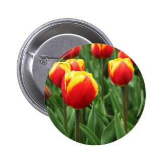Elegant Floral Pins
