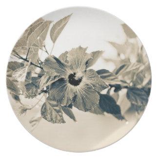 Elegant Flower on Branch Plates