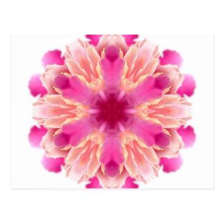 elegant flower peach pink white by healing love postcard