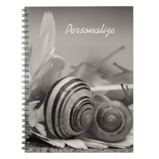 Elegant Garden Snails On Gerbera Daisy With Name Notebook