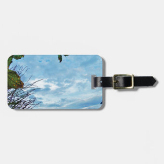 Elegant Holly Christmas blue sky Tags For Luggage