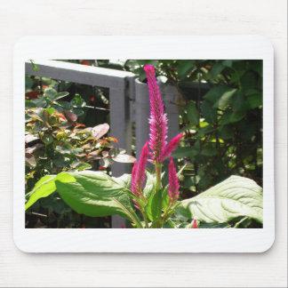 Elegant Home Garden Flower TEMPLATE Resellers FUN Mousepads