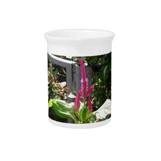Elegant Home Garden Flower TEMPLATE Resellers FUN Drink Pitchers