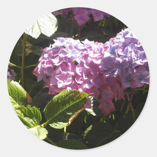 Elegant Hydrangeas Classic Round Sticker
