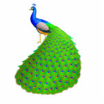 """Elegant Indian Blue Peacock Pin Statuette<br><div class=""""desc"""">Original fine art design of an exotic blue Indian peacock by artist Carolyn McFann of Two Purring Cats Studio printed on a quality acrylic pin for peafowl fans.</div>"""
