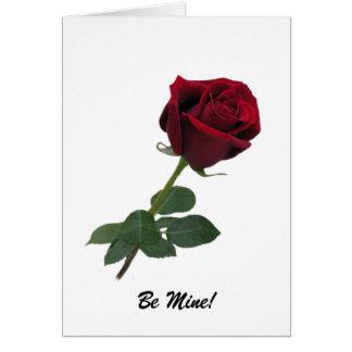 Elegant Long Stem Red Rose Greeting Card