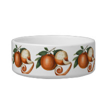 Elegant Mandarin Oranges Antique Chinese Painting Bowl