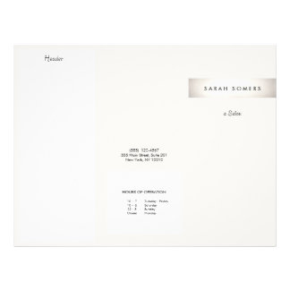 Elegant Modern FAUX Silver Striped Salon Brochure