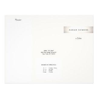 Elegant Modern FAUX Silver Striped Salon Brochure