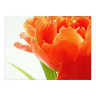 Elegant Orange Tulips Personalized Announcement