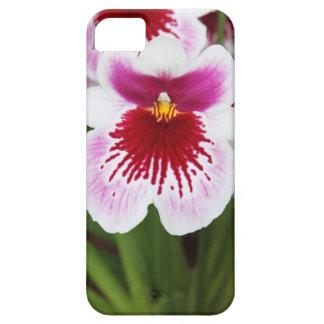 Elegant orchid iris graphic photo iPhone 5case iPhone SE/5/5s Case