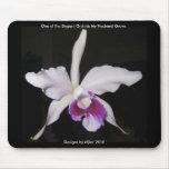 Elegant Orchid Mousepad 1
