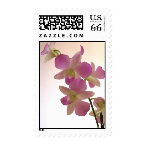 Elegant orchid stamp