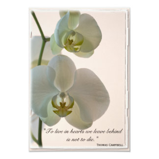 Elegant Orchid Thank You for Your Sympathy Note Card