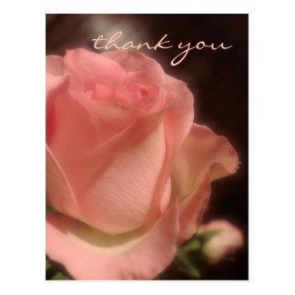 Elegant Peach Rose - Thank You Postcard