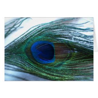 Elegant Peacock Feather Card