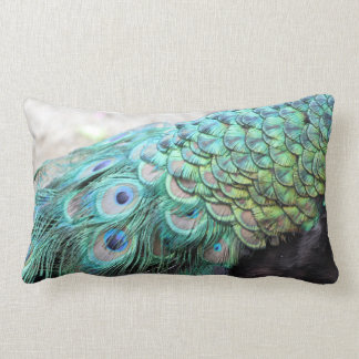 Elegant Peacock Feathers Lumbar Photo Throw Pillow