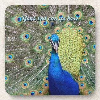 Elegant Peacock Photograph Coaster