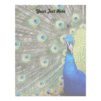 Elegant Peacock Photograph Letterhead