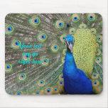 Elegant Peacock Photograph Mousepads