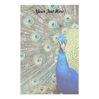 Elegant Peacock Photograph Stationery