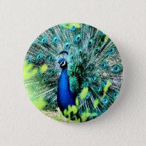 Elegant Peacock Pinback Button