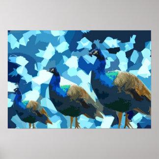 Elegant Peacock Poster